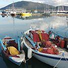 Fishing boats resting by parvmos