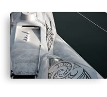 Earthrace Canvas Print