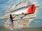 AJS Big Mouth Popper Saltwater Fishing Lure by MotherNature