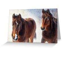 Youngsters in the Snow Greeting Card