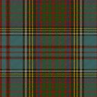 00005 Anderson Clan Tartan Fabric Print Iphone Case by Detnecs2013