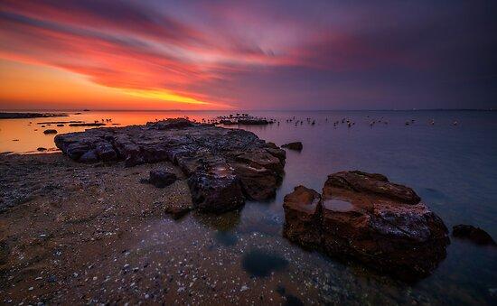 Brighton Beach  by Lincoln Harrison