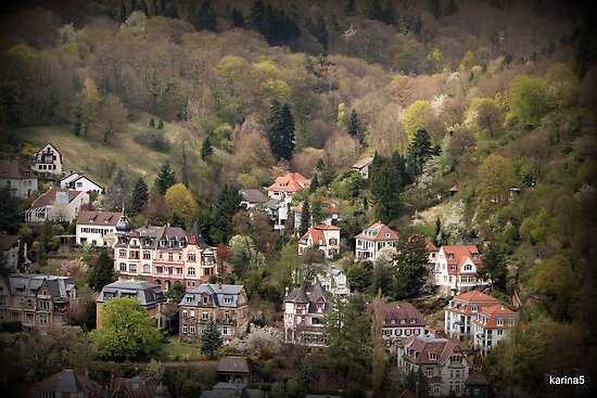 On the Outskirts of Heidelberg by karina5
