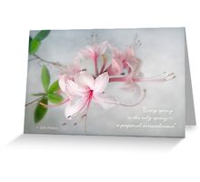 Wild Azaleas in Spring Greeting Card