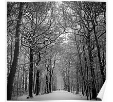 The Montmorency forest in winter Poster