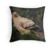 Tawny Eagle Throw Pillow