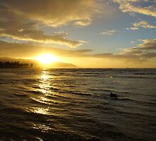 Hale'iwa Sunset by Tamie Bee