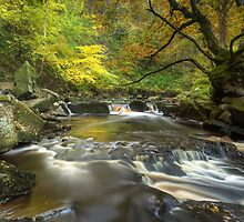 Mallyan Spout and West Beck by MartinWilliams