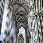 The Cathedral at Rouen (2) by Larry Lingard-Davis