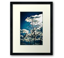 Eco Friendly  / 1  Framed Print