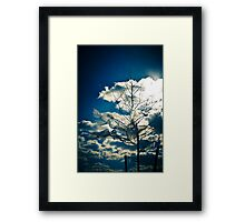 Eco Friendly  /  3 Framed Print