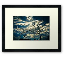 Eco Friendly  /  10 Framed Print