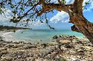 Ocean View at Caves Village in Nassau, The Bahamas by 242Digital