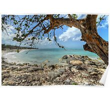 Ocean View at Caves Village in Nassau, The Bahamas Poster