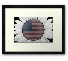 American Sunflower Power Framed Print