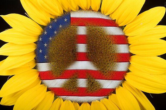 Sunflower Peace Sign by Bo Insogna