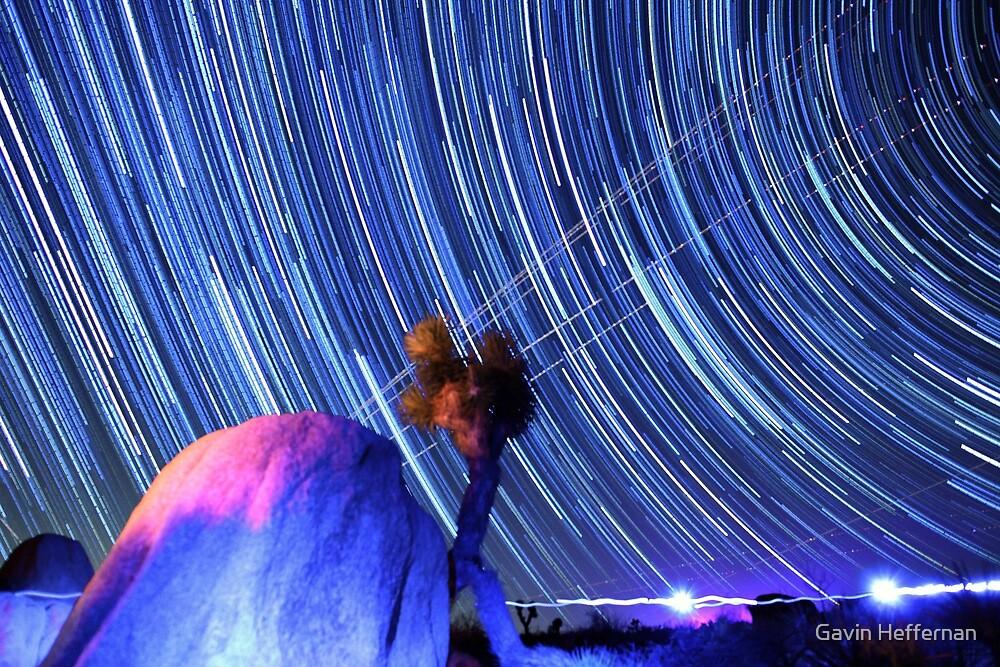 Electric Blue Star Trails Over Joshua Tree Desert Sky by Gavin Heffernan