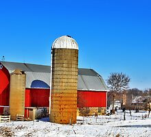 Red Barn And Silos by EBArt