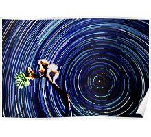 Epic Star Trails Vortex Over Joshua Tree. Polaris in Frame. Poster