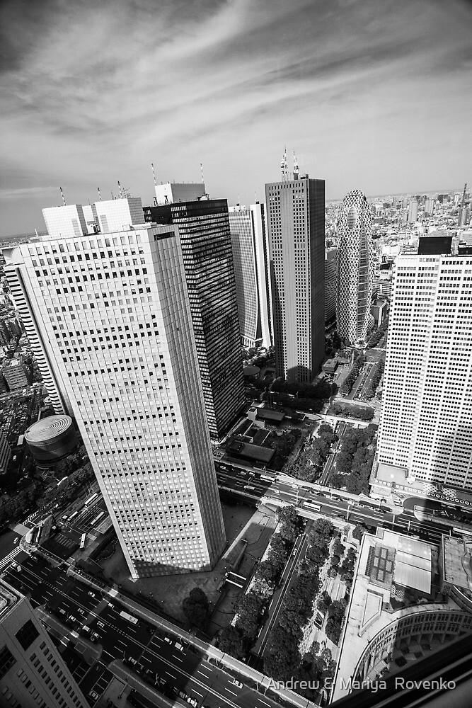 Tokyo skyline by Andrew & Mariya  Rovenko