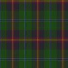00011 Young Clan Tartan Fabric Print Iphone Case by Detnecs2013