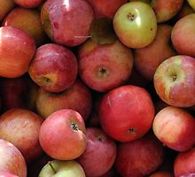 Red Apples by TCbyT