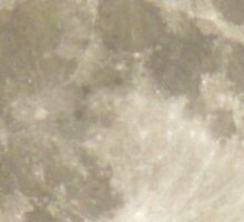 Silver Full-moon In The Sky Sticker