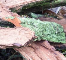 Pile of old tattered bark covered with moss Sticker