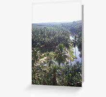 coconut trees surrounding river  Greeting Card
