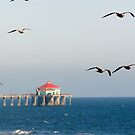 Huntington Beach Pier, California by Joni  Rae