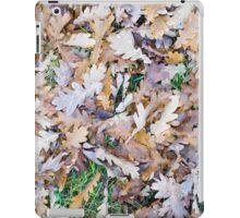 Top view of a layer of fallen oak leaves iPad Case/Skin