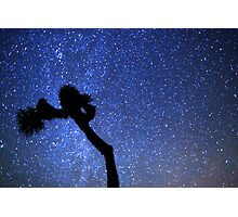 Sea of Stars Galaxy Over Joshua Tree Photographic Print
