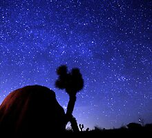 Starscape Over Joshua Tree Desert by Gavin Heffernan