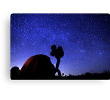 Starscape Over Joshua Tree Desert Canvas Print
