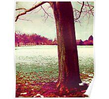 Martian Winter I Poster