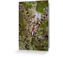 Indian Ornamental Tarantula  Greeting Card