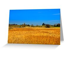 Reeds in the wind Greeting Card