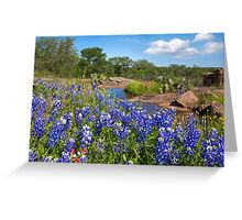 Bluebonnets in the Texas Hill Country 3 Greeting Card