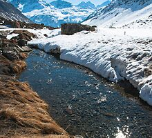 Dazzling Stream on the Julier Pass by Michael Brewer