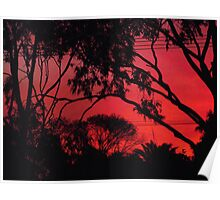 Stunning sunset outlines Poster