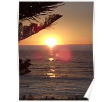 Cottesloe Beach sunset  Poster
