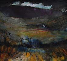 'Welsh Hill Farm, Dolgellau' by Martin Williamson (©cobbybrook)