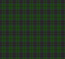 00043 Austin Clan Tartan Fabric Print Iphone Case by Detnecs2013