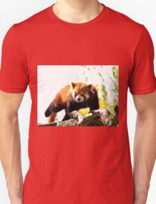 Red Panda Walking On Branch T-Shirt