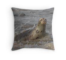 Atlantic Grey Seal Throw Pillow