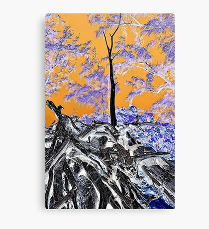 Driftwood in negative film effect Canvas Print