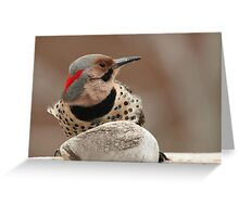 A Beautiful Visitor ~ Greeting Card