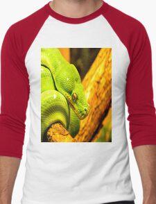 Emerald Tree Boa Men's Baseball ¾ T-Shirt