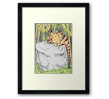 Lazy Tiger Framed Print