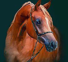Arabian horse by Marsea